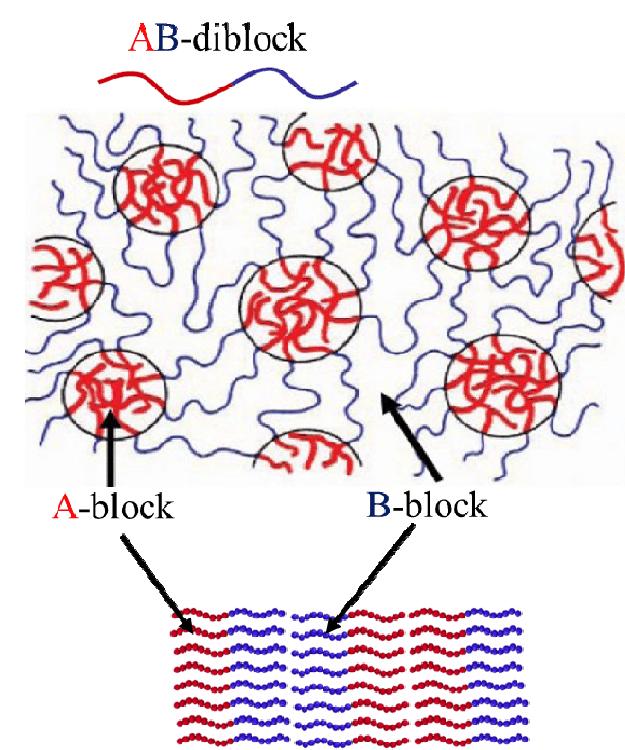 Block copolymer self assembly